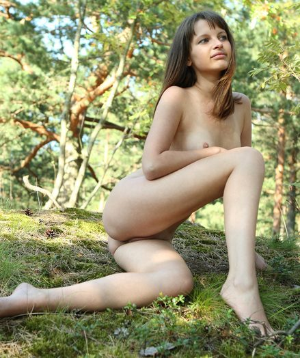 Unreserved in the woods
