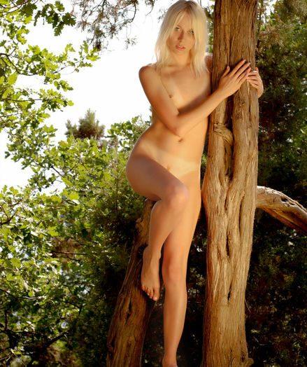 De-robe showcase in the woods
